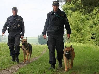Policejní pátrací akce