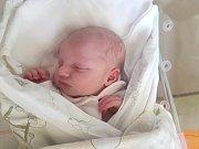 ALICE ŘÍHOVÁ, SLANÝ. Narodila se 5. března 2018. Po porodu vážila 2,87 kg a měřila 50 cm. Rodiče jsou Jana Mäsiarová a Zdeněk Říha. (porodnice Slaný)