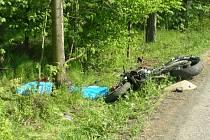 Stromy u silnice jsou velmi často příčinou smrtelných nehod. Bohužel bez stromů žít ale rovněž nelze.