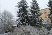 Lednový sníh na Kladensku.