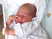 PATRIK HOLMAN, KLADNO. Narodil se 5. června 2018. Po porodu vážil 3,15 kg a měřil 47 cm. Rodiče jsou Adéla Dušková a Patrik Holman. (porodnice Kladno)