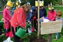 Děti z kladenské oční školky zasadily na zahradě tři lípy