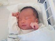 LUYEN DANG KMOA, KLADNO. Narodila se 4. prosince 2018. Po porodu vážila 3,7 kg. Rodiče jsou Vu Thi Huong Giang a Luyen Trung Mieu. (porodnice Kladno)