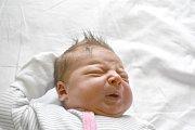ROZÁRIE PAVLÍKOVÁ, BUŠTĚHRAD. Narodila se 24. března 2018. Po porodu vážila 3,6 kg a měřila 50 cm. Rodiče jsou Markéta Turzová a Jaroslav Pavlík. (porodnice Kladno)