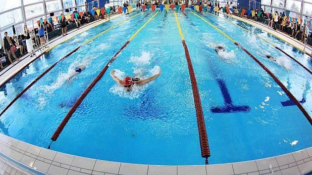 Plavání v kladenském akvaparku.