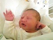 DEA STANEVA, KLADNO. Narodila se 11. prosince 2017. Po porodu vážila 4,06 kg a měřila 52 cm. Rodiče jsou Desislava Staneva a Anton Ugrinov. (porodnice Kladno)