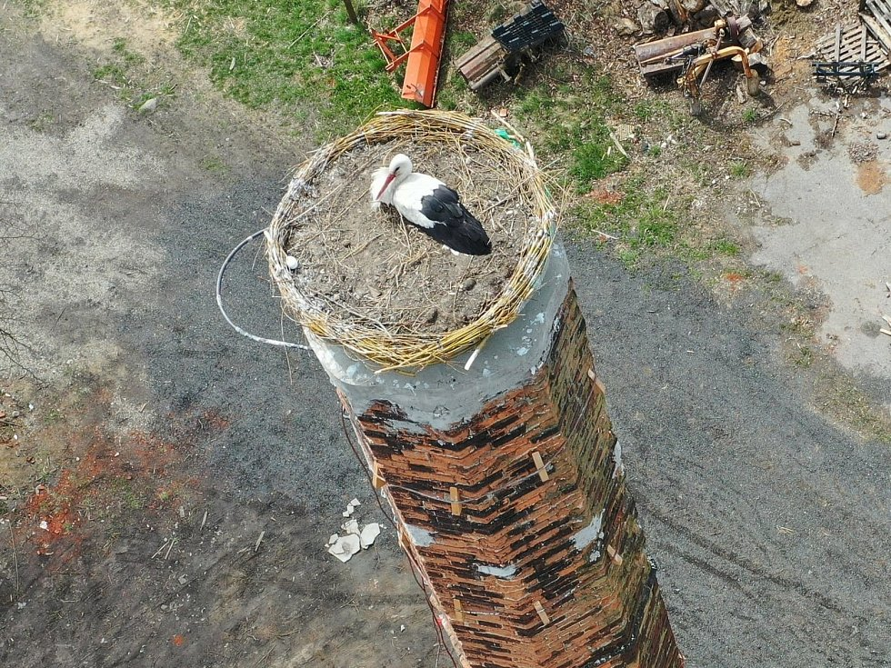 Na opraveném komíně v Kačici se usídlil čapí pár.