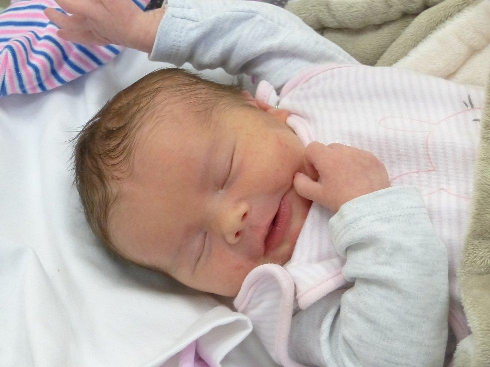 Ellen Pánková se narodila 4. ledna 2021 v kolínské porodnici, vážila 3575 g a měřila 49 cm. V Kolíně bude vyrůstat se sestřičkou Natálkou (3) a rodiči Blankou a Martinem.