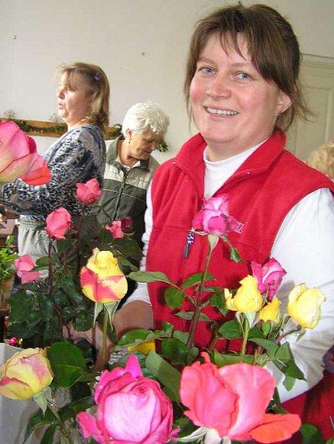 Soutěž o nejkrásnější růži Kladenska začíná právě dnes