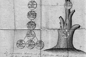 Fragment rodokmenu Haanů z Löwenbergu, malba tuší a inkoustem na papíru, datováno 1816.