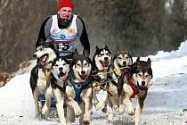 Ondra Stejskal na mistrovství světa psích spřežení.