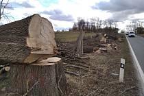 Průklest dřevin ve směru z Kladna na Velkou Dobrou.