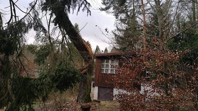 Padesátiletý smrk minul chatu jen o fous, nikdo nebyl zraněn.