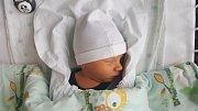 ADAM NOHAVIČKA, NOVÉ STRAŠECÍ. Narodil se 25. října 2018. Po porodu vážil 2,62 kg a měřil 47 cm. Rodiče jsou Radka Hanzlíková a Aleš Nohavička. (porodnice Kladno)