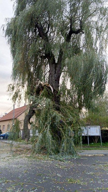 Ve Staré Huti jednotky HZS Dobříš spolu s SDH Stará Huť odstraňovaly zlomenou mohutnou vrbu.