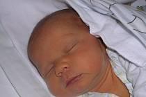Michal Žák, Břešťany. Narodil se 6. dubna 2012. Váha 3,85 kg, míra 52 cm. Rodiče jsou Monika Žáková a Otto Náprstek. (porodnice Slaný)