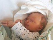SAMUEL BITNER, KLADNO. Narodil se 22. listopadu 2018. Po porodu vážil 3,5 kg a měřil 50 cm. Rodiče jsou Alžběta Bitnerová a Petr Bitner. Sourozenci Mája, Ben, Luisa a Maty. (porodnice Kladno)
