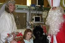 Mikuláš, čert a anděl navštívili v pátek 5. prosince také malé pacienty v kladenské nemocnici.