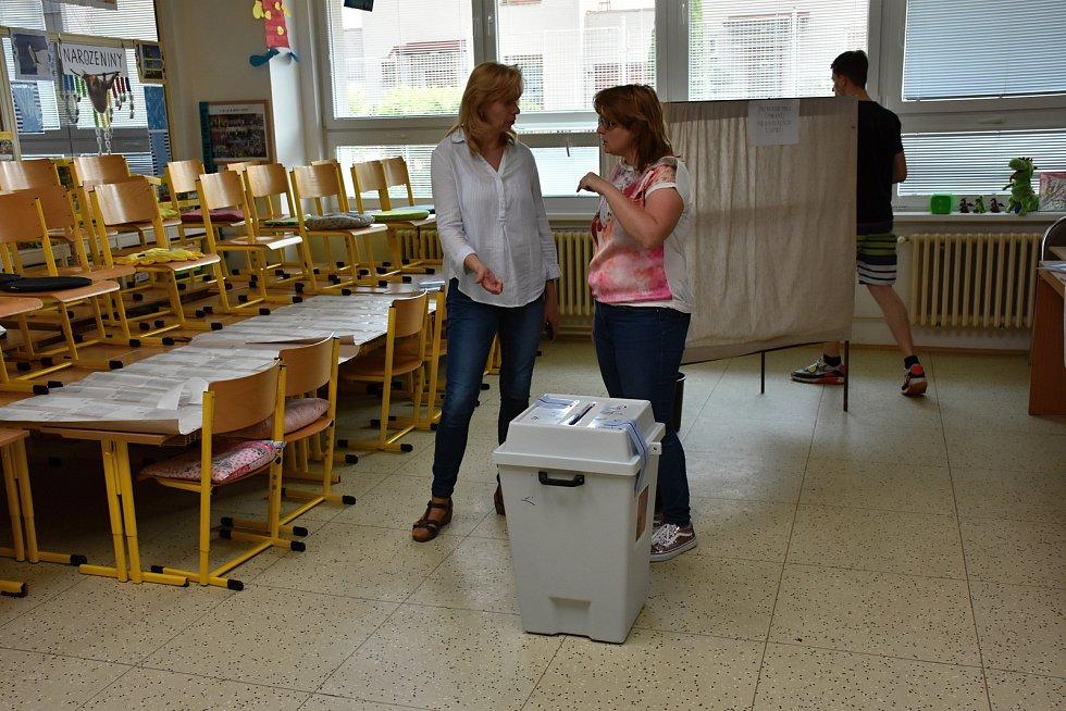 Volby do Evropského parlamentu ve Slaném.