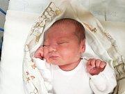 ELENA JAUERNIKOVÁ, KLADNO. Narodila se 5. ledna 2018. Po porodu vážila 3,34 kg a měřila 50 cm. Rodiče jsou Pavlína Procházková a Václav Jauernik. (porodnice Slaný)