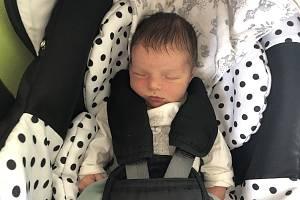 Norbert Trpišovský, Dobrovíz. Narodil se 15. června 2019. Po porodu vážil 3,17 kg a měřil 51 cm. Rodiče jsou Barbora Trpišovská a Michal Trpišovský. Sestřička Erika. (porodnice Kladno)