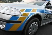 KLADENŠTÍ POLICISTÉ prošetřují krádeže drogerie i potravin.