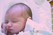 VALENTÝNA GARAMSZEGI, KLADNO. Narodila se 14. prosince 2017. Po porodu vážila 3,1 kg a měřila 50 cm. Rodiče jsou Zuzana Tomečková a Tomáš Garamszegi. (porodnice Kladno)