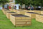Ze slavnostního otevření komunitní zahrady na Václaváku v Kročehlavech.