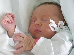 Malvína Rysová, Pchery. Narodila se 23. března 2015. Váha 2,44 kg, míra 50 cm. Rodiče jsou Michaela Kottová a David Rys (porodnice Kladno).