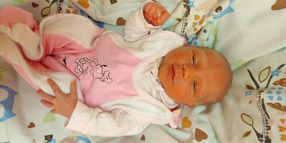 Hanička Nováková přišla na svět 5. února 2021 v 10. 47 hodin v čáslavské porodnici. Pyšnila se porodní váhou 3430 gramů a délkou 52 centimetrů. Doma v Čáslavi ji přivítali maminka Hana, tatínek Josef, čtyřletá sestřička Hanička a roční bráška Pepíček.