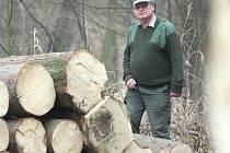 Správci lesů tvrdí, že těžba v Bilichově a  Boru je v souladu s národním plánem. Lidé tomu věří jen stěží.
