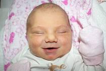 MEDA NOVOTNÁ, LÍŠŤANY U LOUN. Narodila se 23. ledna 2020. Po porodu vážila 3,17 kg a měřila 49 cm. Rodiče jsou Karolína Trupová a Jakub Novotný. (porodnice Slaný)