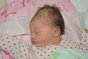 VIKTORIE VALÁŠKOVÁ, BUŠTĚHRAD.Narodila se 14.11.2017.Váha 3,300kg , výška 50cm. (Porodnice Kladno).