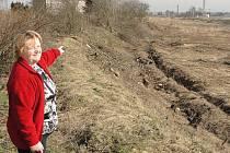 Místní mrzí, že na Dřevěnkově pokáceli kvůli stavbě elektrárny mnoho zdravých stromů.