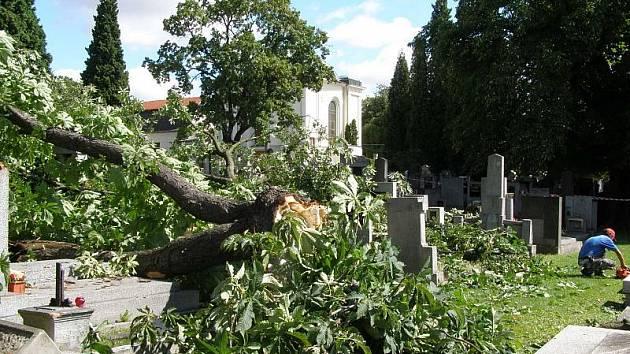 Padlá část stomu způsobila škody na náhrobních kamenech a deskách