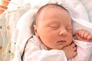 ANNA KOCMANOVÁ, BĚLEČ. Narodila se 9 dubna 2018. Po porodu vážila 3,99 kg a měřila 50 cm. Rodiče jsou Kateřina a Lukáš Kocmanovi. (porodnice Kladno)