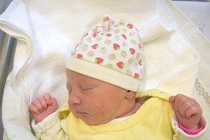 Alena Chaloupková, Kladno. Narodila se 8. října 2017. Váha 2,85 kg, výška 47 cm. Rodiče nebyli uvedeni. (porodnice Slaný)