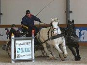 V Královicích se uskutečnil zimní jezdecký pohár.