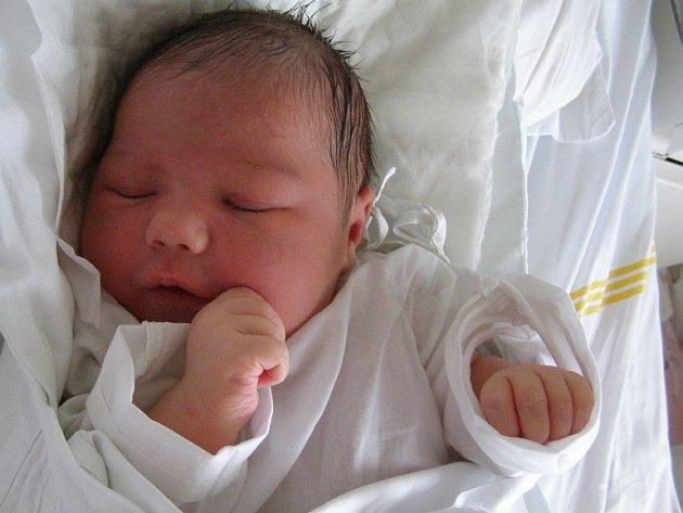Marie Houtová, Svárov, 23. 9. 2008, váha 3,90 kg, míra 51 cm, rodiče Kristýna a Pavel Houtovi (porodnice Kladno).
