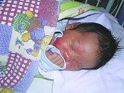Trieu Hoang Hai, Slaný. Narodil. 22. dubna 2012, váha 3,1 kg, míra 50 cm. Maminka je Nguyen Beien Van. (porodnice Slaný)