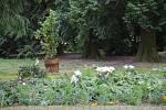 Zahrada u lánského zámku.