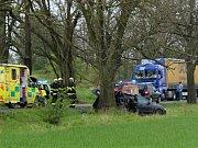 Řidička utrpěla po nárazu do stromu vážné poranění hlavy, dítě otřes mozku.