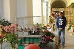 Výstava slánských zahrádkářů v chodbě knihovny V. Štecha