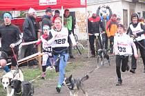 ZÁVODNÍCI v kategorii juniorů změřili své síly také v individuální disciplíně, kterou byl běh se svými čtyřnohými kamarády.