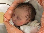 SILVIE FIZÉROVÁ, HOBŠOVICE. Narodila se 20. května 2019. Po porodu vážila 2,8 kg a měřila 49 cm. Rodiče jsou Dana Fizérová a Radek Fizér. Sestřička Radka. (porodnice Slaný)