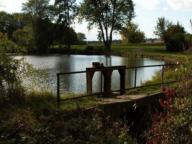 Cukrovarský rybník Studeněves