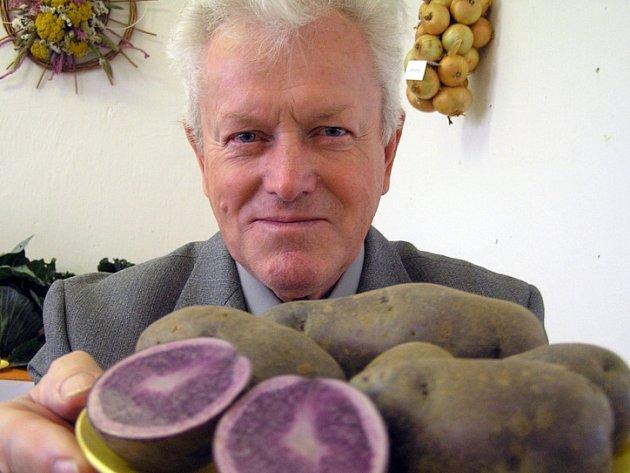 Josef Jandík na výstavě zahrádkářů představuje mimo jiné zvláštní fialové brambory.