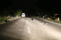 Při dopravní nehodě mezi Jenčí a Pavlovem zemřel člověk.