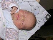 Lukáš Dekoj, Vrbičany. Narodil se 23. dubna 2012, váha 3,96 kg, míra 51 cm. Rodiče Blanka Vitochová a Radek Dekoj. (porodnice Slaný)