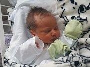 ONDŘEJ ŠŮLA, KLADNO. Narodil se 18. prosince 2018. Po porodu vážil 2,98 kg a měřil 47 cm. Rodiče jsou Jana Šůlová a Pavel Dvořák. (porodnice Kladno)